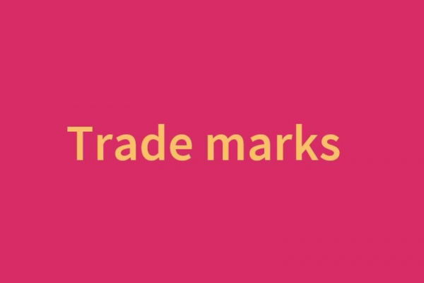 immoral or offensive brands can be trade marks?